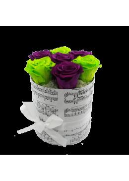 Rose éternelle  L'amour  la Française Box Pussy Roses Verte et Mauve